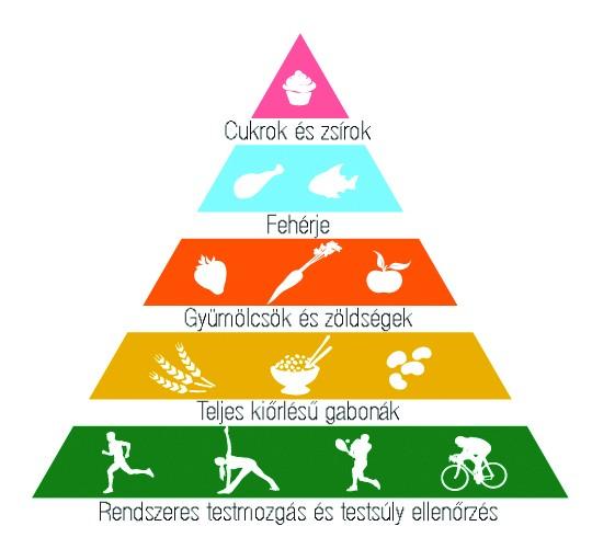 http://www.markusistvan.hu/wp-content/uploads/2012/09/egeszseg-piramis.jpg